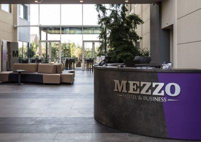 Mezzo Reception